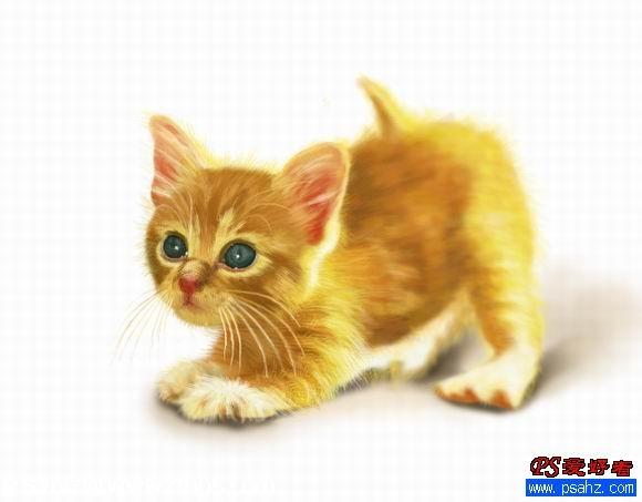 还是一只金色毛的小猫咪,非常可爱,一起来学习一下吧