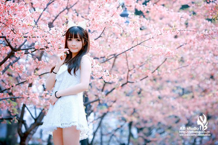 又到樱花烂漫时 她在丛中笑 阿宝出品