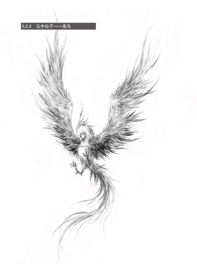 黑白画意——专业手绘插画攻略