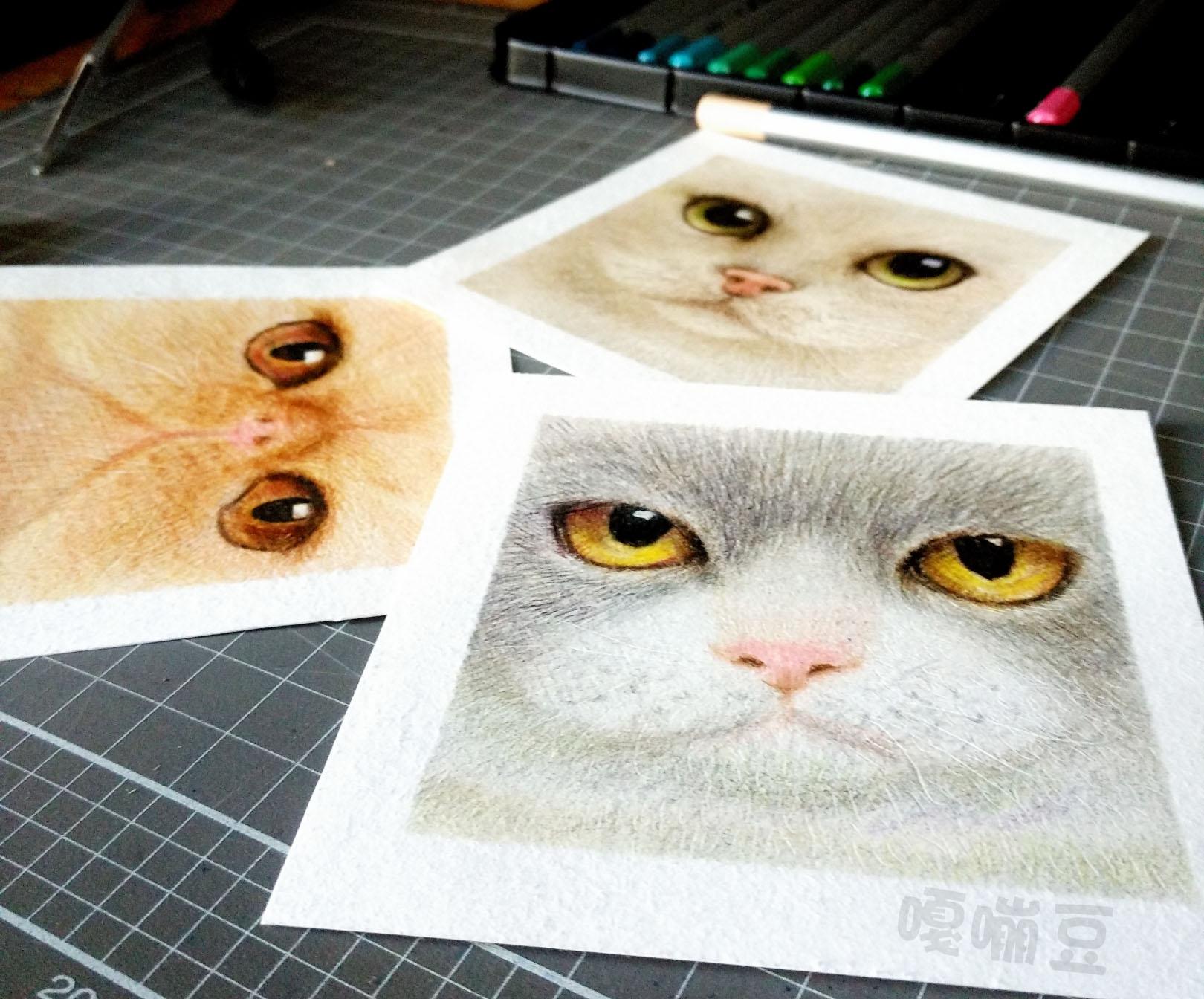 彩铅动物教程步骤图片