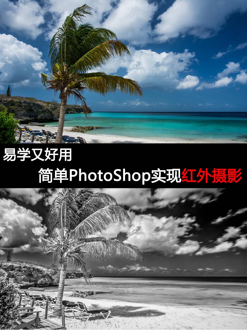 人人都学得会的后期 PhotoShop版红外摄影