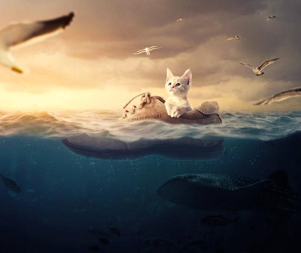 PS合成乘鞋环游大海的小猫